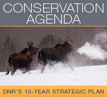 Conservation agenda button. Click to learn more about 10 year strategic plan.