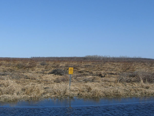 Roseau Wildlife Management Area