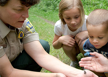 naturalist in park teaching kids