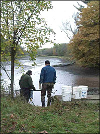 Image: muskellunge rearing pond in St. Croix State Park.