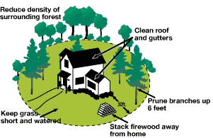 graphic: showing a defensible space
