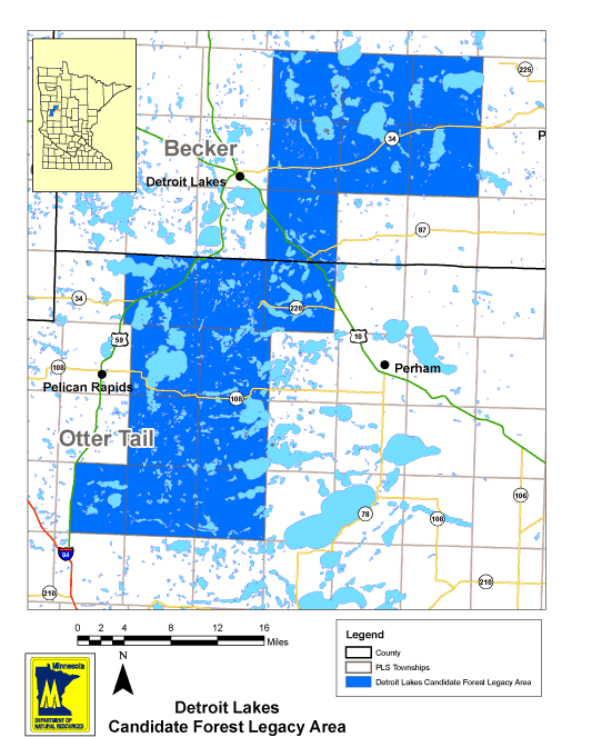 Detroit Lakes Forest Legacy Area