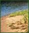 Sand/Gravel beach