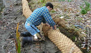 installing coir log