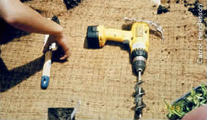 drill and planting trowel