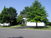 photo: Residential house with trees in front yard.