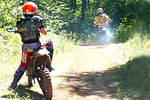 R. J. Dorer State Forest OHV Trails: Trout Valley