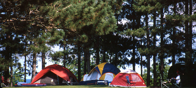 tent camping in a state forest