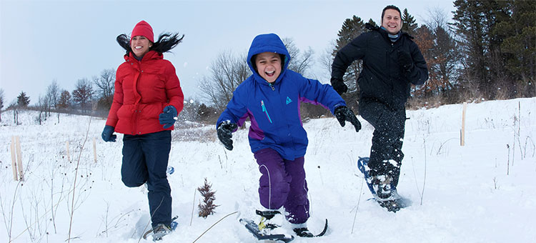 Winter activities in Minnesota state parks.