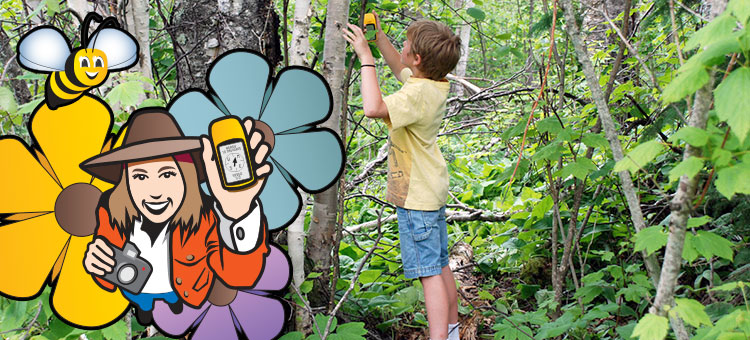 Geocaching - Call of the wildflowers