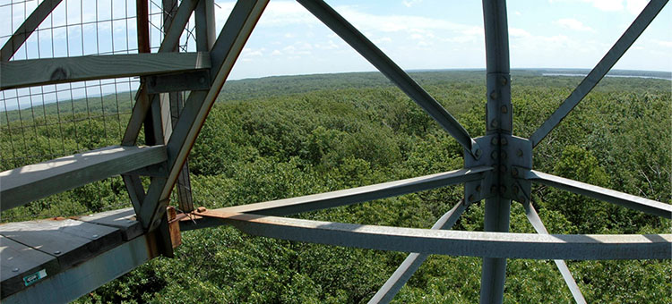 Views overlooking state parks and a firetower