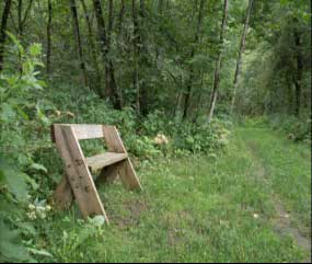 Photo of one of the benches that mark walking tour viewpoints.
