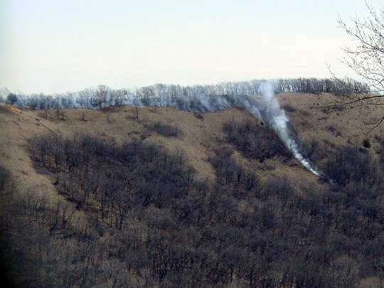 A managed burn traveling down a slope.
