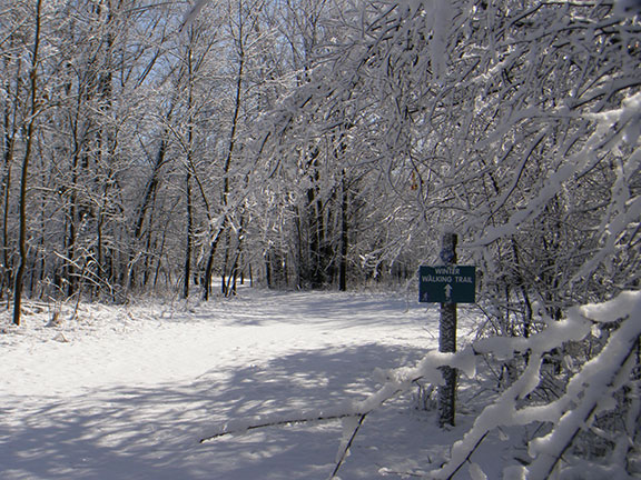 Photo of a walking trail in winter.