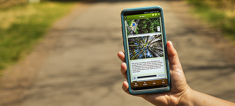 Gooseberry Falls Go app being used on a trail