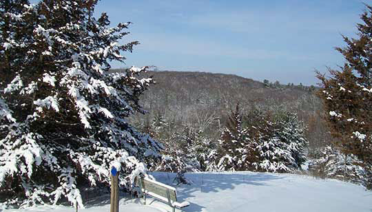 Winter at Wild River State Park