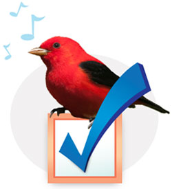 Photo of a Scarlet Tanager bird sitting on a checkbox.