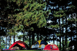 Group camping