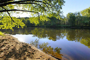 Photo of a canoe-in campsite is located along the Kettle River nestled in a low land area brimming with ash trees.