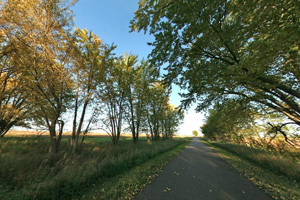 View of asphalt trail, shaded by trees before traveling into a prairie landscape.