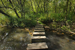 Photo of stepping stones spanning the North Branch of the Whitewater River.