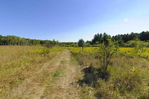 Photo of a hiking trail running through prairie.