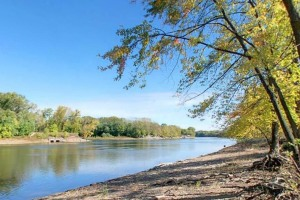 Photo of the Mississippi River shoreline.
