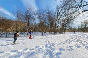 Photo of winter cross-country skiers on the park trail system.