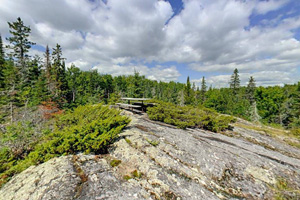 Photo of rock outcroppings with forest in the background.