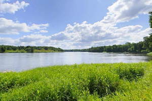 Photo of the Rainy River shoreline on a sunny day.