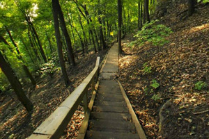 Photo of a series of wooden stairs and switchbacks for adventurous hikers using the Bluff Side Trail.