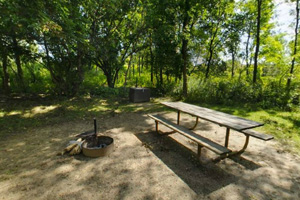 Photo of a picnic table, fire ring, and food locker ready for the next visitors at a park cart-in site.