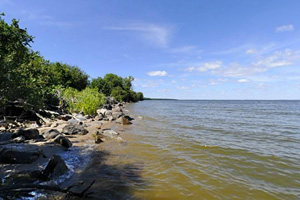 Photo of the northern shoreline of Garden Island under a blue sky.