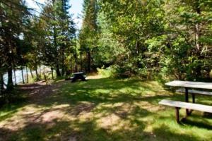 Photo of the picnic grounds along Benson Lake.