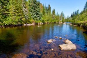 Photo of the upper Manitou River.