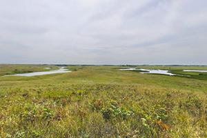 Photo of a view of Kettle Lake, several wetland areas.