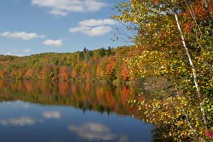 Photo of the Grand Portage Trail from the water, taken in fall.