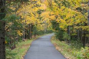 Photo of the Willard Munger State Trail in autumn.
