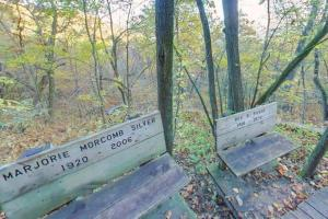 Photo of the memorial benches located along Riverview Trail.