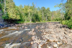Photo of wooded shoreline along the Brule River.