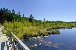 Photo of an overlook on Sundew Pond, not far off the Paul Bunyan State Trail.
