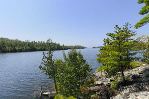 Photo of one of the islands within Lake Vermilion State Park.