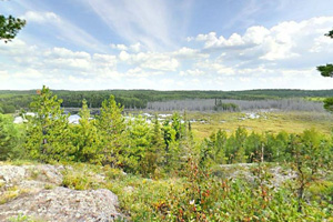 Photo of a large beaver wetland complex located below, viewed from a high, rocky outcrop.