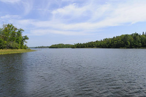 Photo of Mattson Bay on Lake Vermilion.