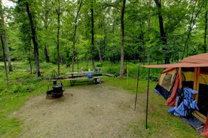 Photo of a campsite in the Petaga Campground.