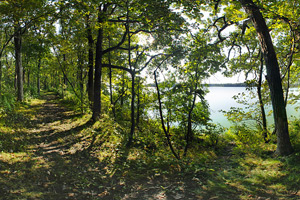 Photo of a sun shaded view of West Sunburg Lake.