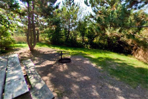 Photo of a picnic table, fire pit, and tent area at one of Moose Lake State Park's walk-in campsites.