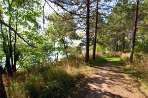 Photo of Moose Lake State Park's East Echo Trail with the lake on the left.