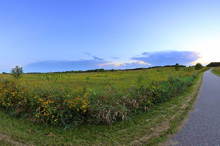 Photo of the paved Blazing Star State Trail as it winds through prairie landscapes.