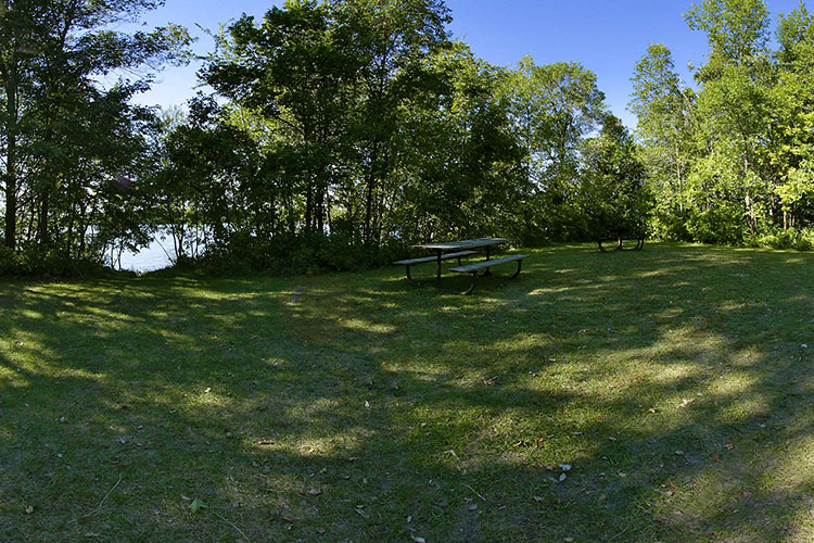 Photo of the wooded group camp area picnic features.
